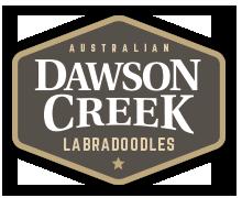 Dawson Creek Labradoodles Logo